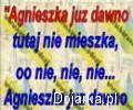 __zy_Agnieszka__karaoke_